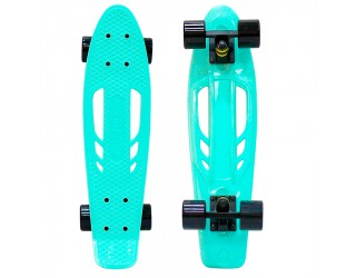 Мини круизер Fish Skateboard Fishbone 22 Aqua/Black